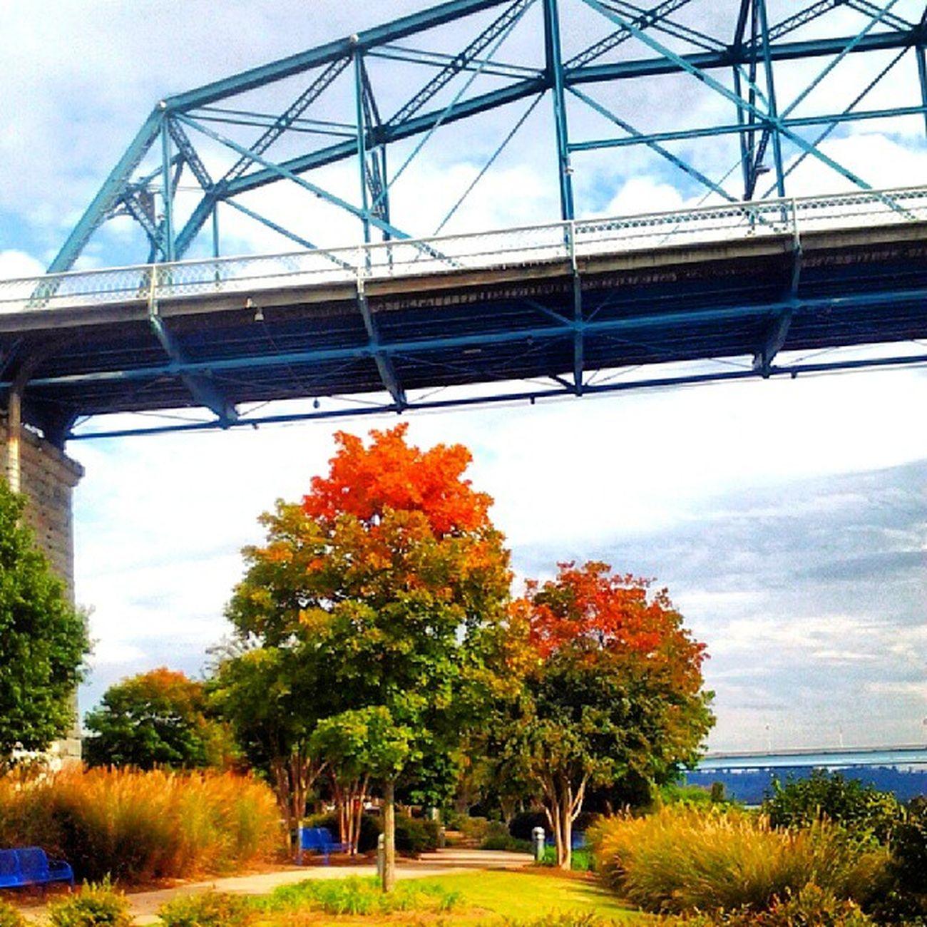 Chattanooga Noogagram Walnutstbridge