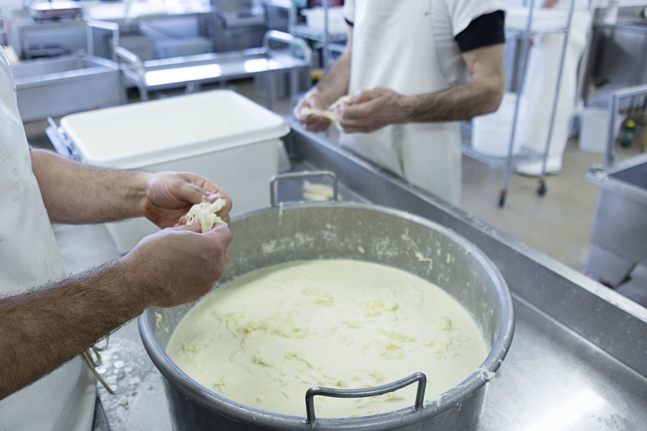 Cheese Dairy Dairy Farm Fresh Cheese  Hands Italian Italian Cheese Italian Food Italy Making Making Cheese Milk Mozzarella People Ricotta Ricotta Cheese