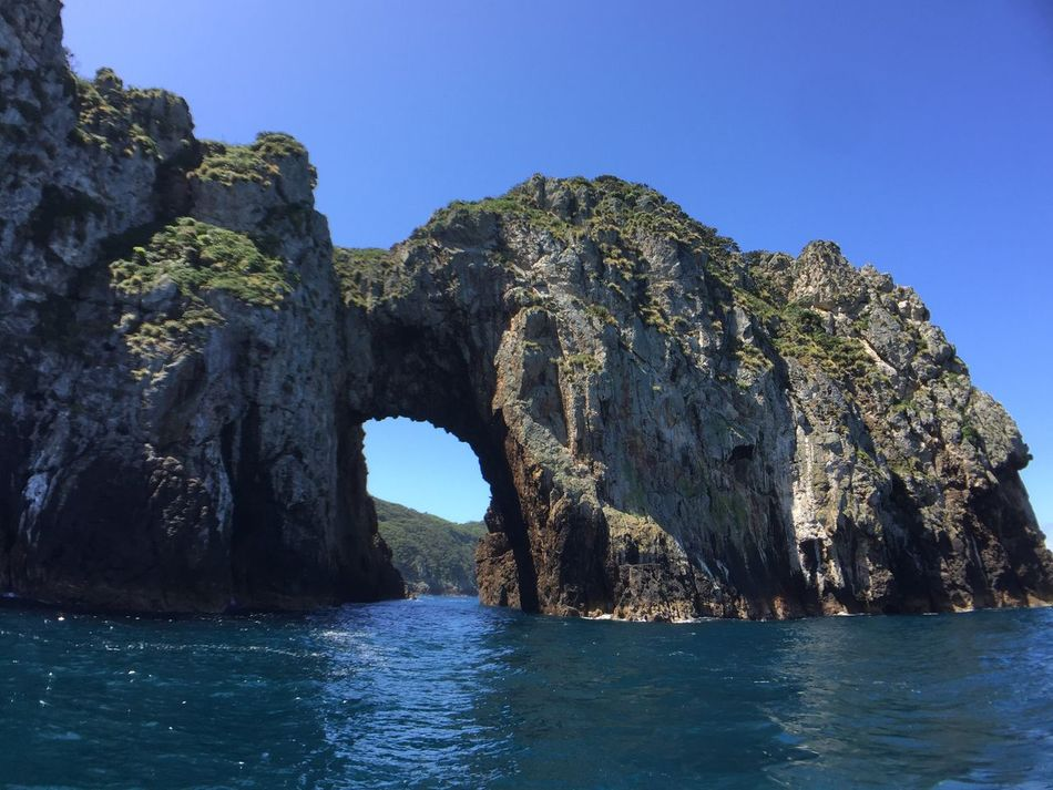 Perfect Day Poor Knights Islands New Zealand Gate