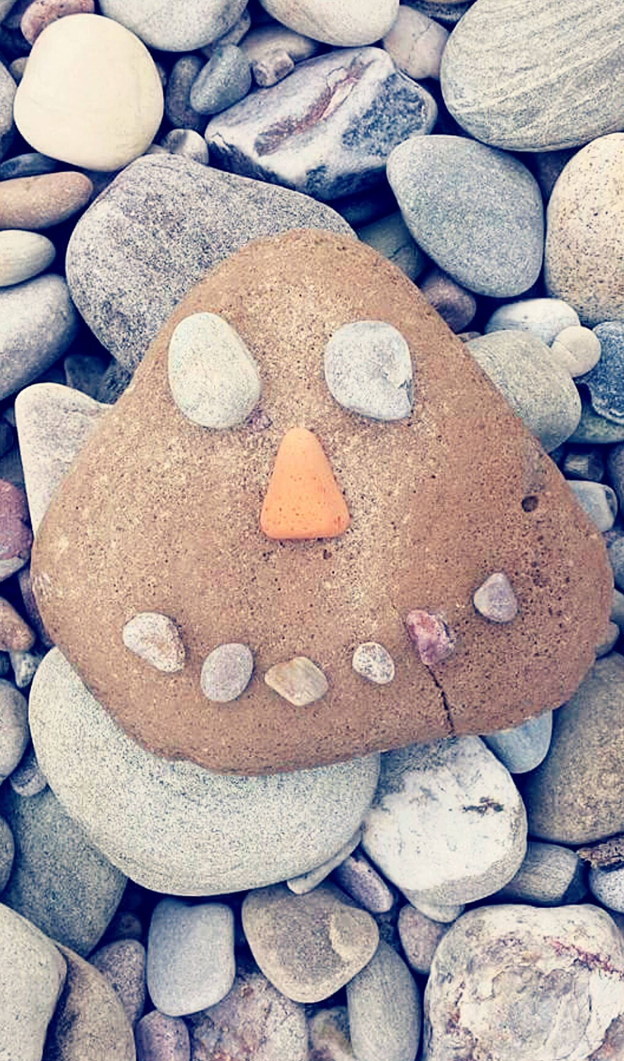 Pebbles Fun Funny Faces On The Beach Stones Cheese! Spey Bay