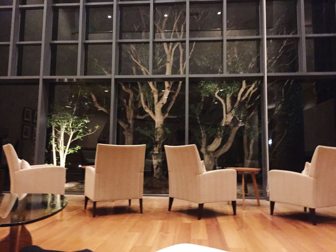 Best Christmas Lights Awaji Illuminati Illumination Light And Shadow Chair Trees