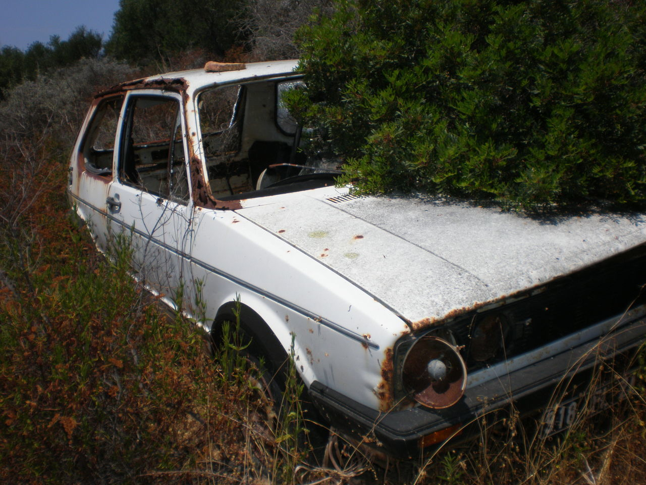 Broken Car Corse Korsika Mountain Nature Wood