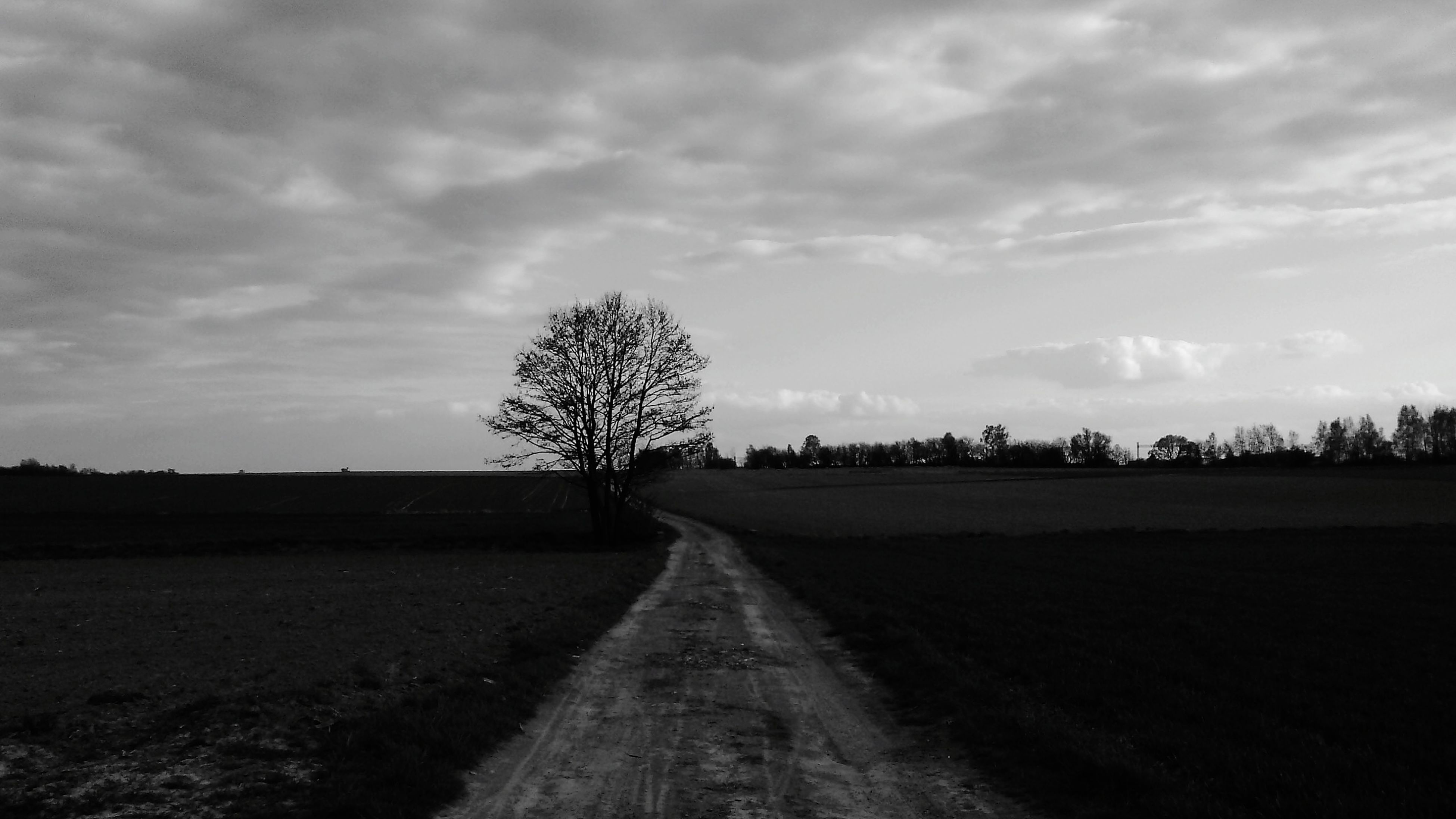 the way forward, sky, diminishing perspective, landscape, tranquility, tranquil scene, vanishing point, cloud - sky, tree, road, field, dirt road, nature, country road, cloud, scenics, cloudy, rural scene, beauty in nature, empty
