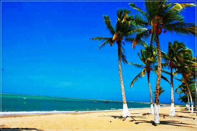 Moro no país tropical abençoado por Deus..... 🌊🏄
