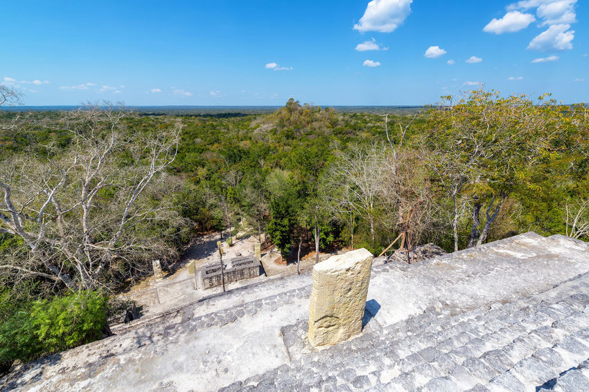 View from the top of Structure One in Calakmul, Mexico Architecture Calakmul Campeche Central America Mayan Mayan Ruins Mexico Pyramid Ruins Travel Yúcatan Biosphere Calakmul Biosphere Reserve Historic Jungle Landscape Maya Rain Forest Reserve Temple Tourism Travel Destinations Xpujil Yucatan Mexico Yucatan Peninsula