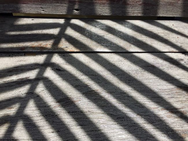 Shadow On Wood Shadow And Light Shadows And Sunlight Shadow Of Leaves Shadow Of A Tree Black And White No People Light And Shadow Art Of Nature Art Of Black And White