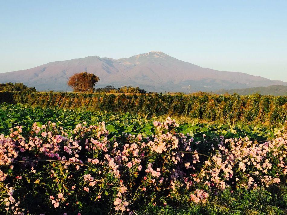 fine autumn weather Autumn Mountains Beutiful  Beutiful Day Eyem Best Shots Mt.Cyokai