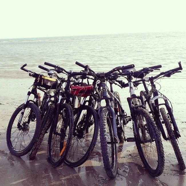 ساحل بوشهر آب شیرین کنهفتهسلامتدوچرخهسواری