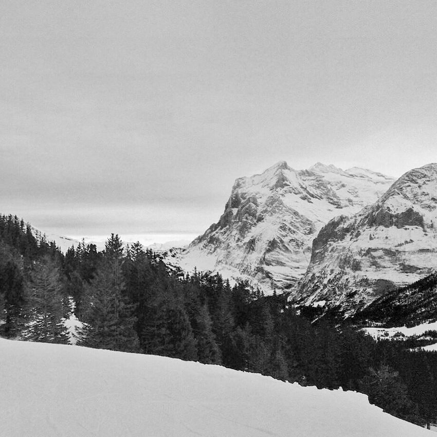 Hanging Out Mountains Blackandwhite Landscape Trees Snow Skiing Schnee Bws_worldwide Ee_daily EE_Daily: Black And White