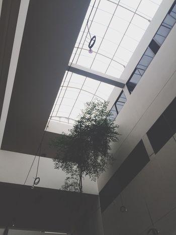 เหงาๆในตึก