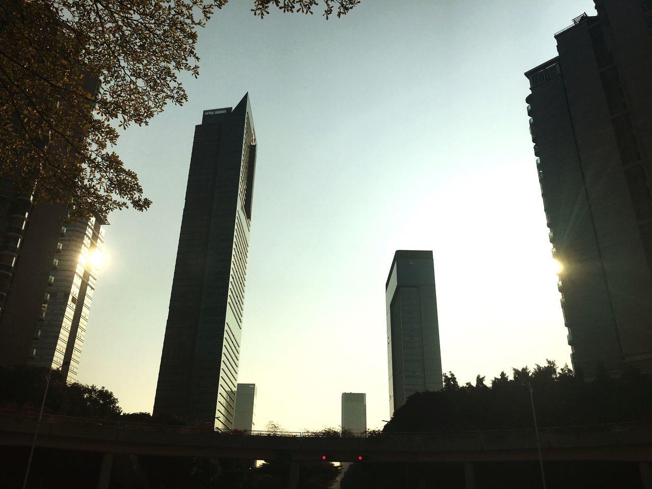The City Light morning
