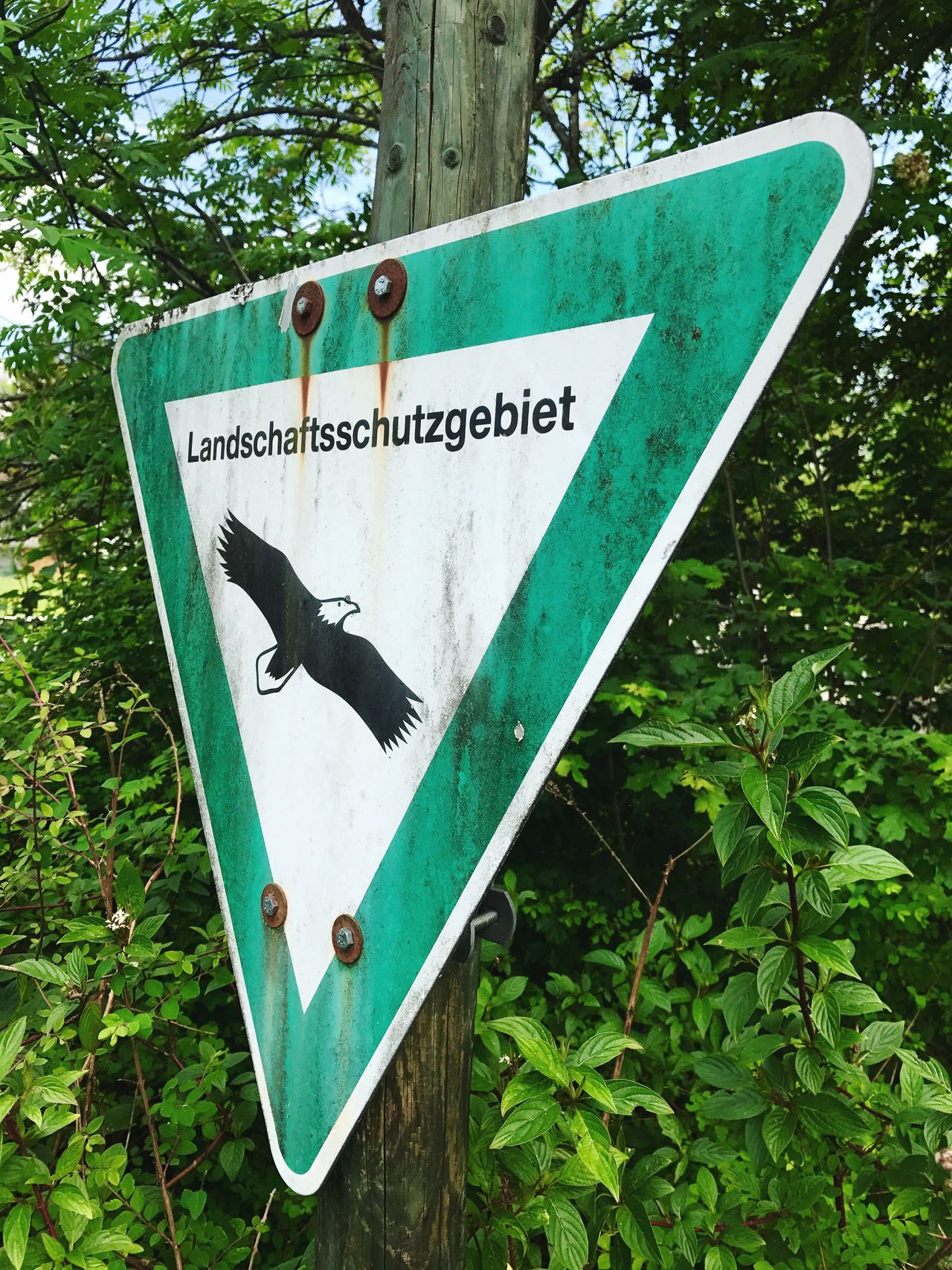 Landschaftsschutzgebiet - protected landscape area sign Text Communication Warning Sign Tree Guidance Day Road Sign Green Color Leaf Signboard Outdoors No People Plant Close-up Nature Landscape Landschaftsschutzgebiet