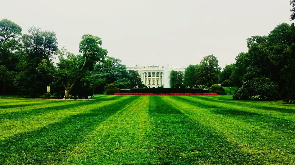 Beautiful stock photos of white house, American Culture, Architecture, Branch, Building Exterior