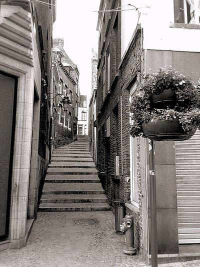 COZY STREET Belgium Streetphotography Street Europe Taking Photos IPhoneography Enjoying Life Blackandwhite