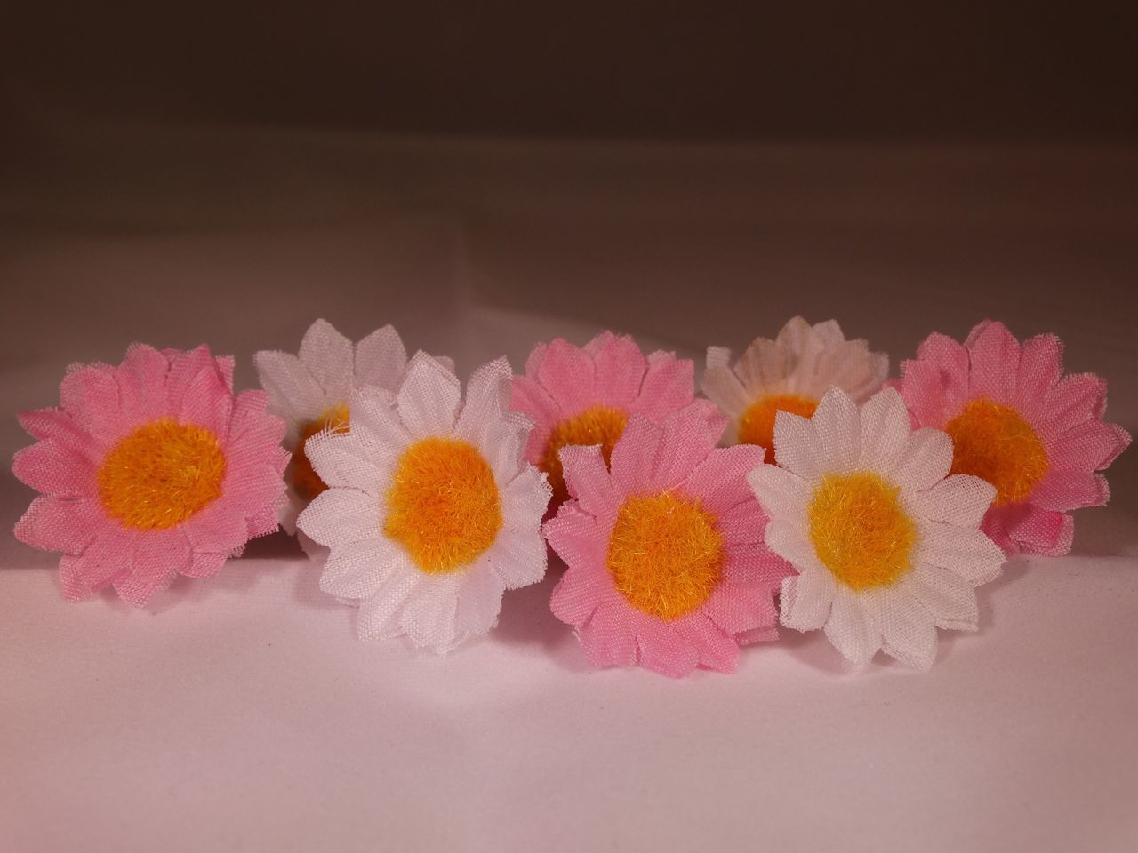 Decorative flowers. Flowers Flower Floral Pink Yellow Yellow Flower Pink Flower Colours Colourful White Background Decorative Flowers Decoration Little Flowers Close Up Close-up Closeup Pretty Beautiful Fake Studio Shot Lines Row White Flower Showcase April