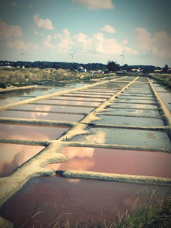 Salt Marais