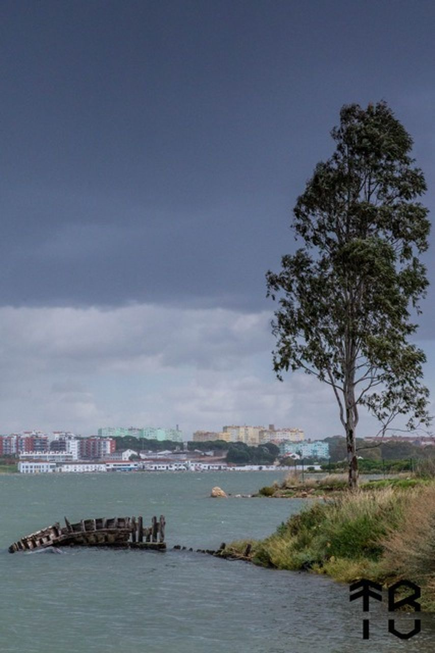 sky, sea, water, architecture, outdoors, nature, beach, tree, day, building exterior, no people, beauty in nature, city