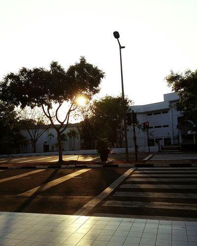 Sunset Zebra Crossing UUM