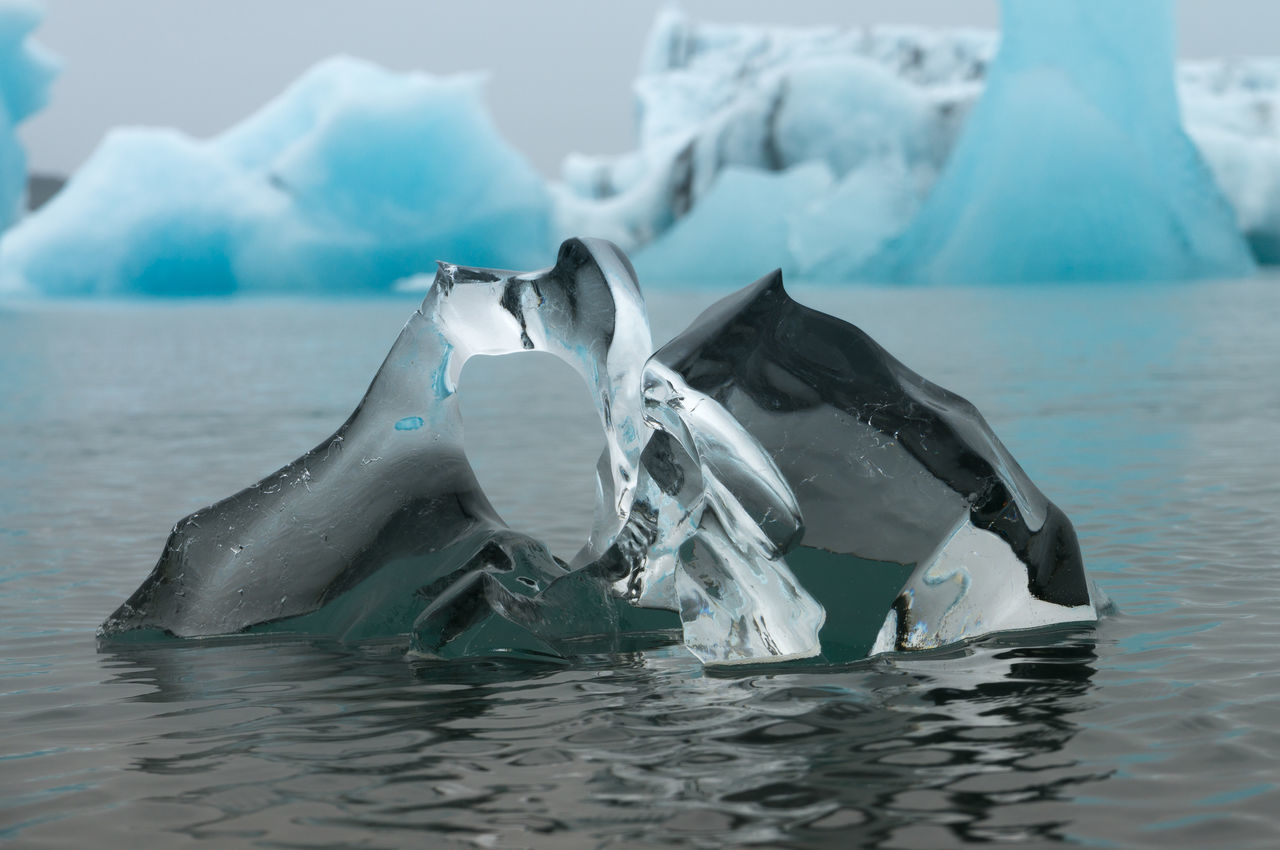 water, sea, no people, nature, waterfront, day, cold temperature, outdoors, beauty in nature, iceberg, animal themes, close-up, sky
