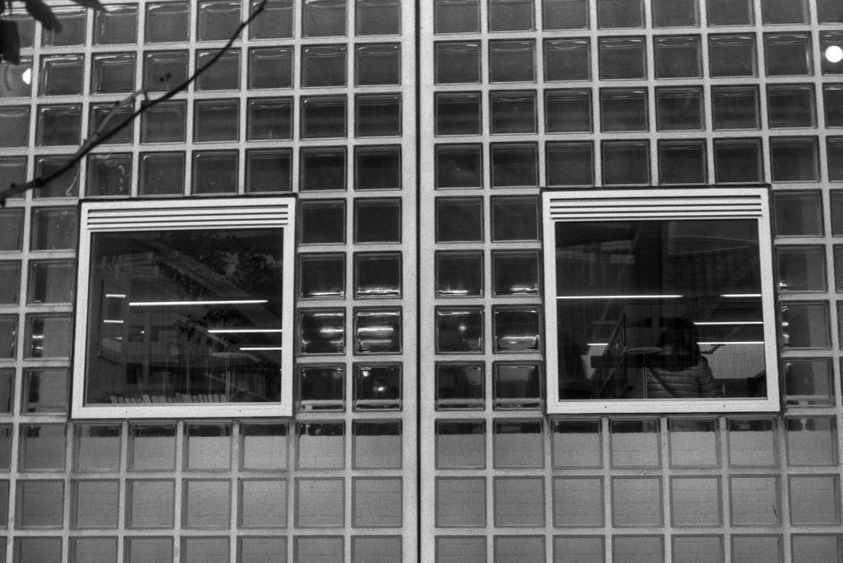 Squares 35mm Film Analogue Photography Architecture Black & White Fomapan100 Glass Library Modern Modern Architecture People Rodinal Square Symmetrical Symmetry Window