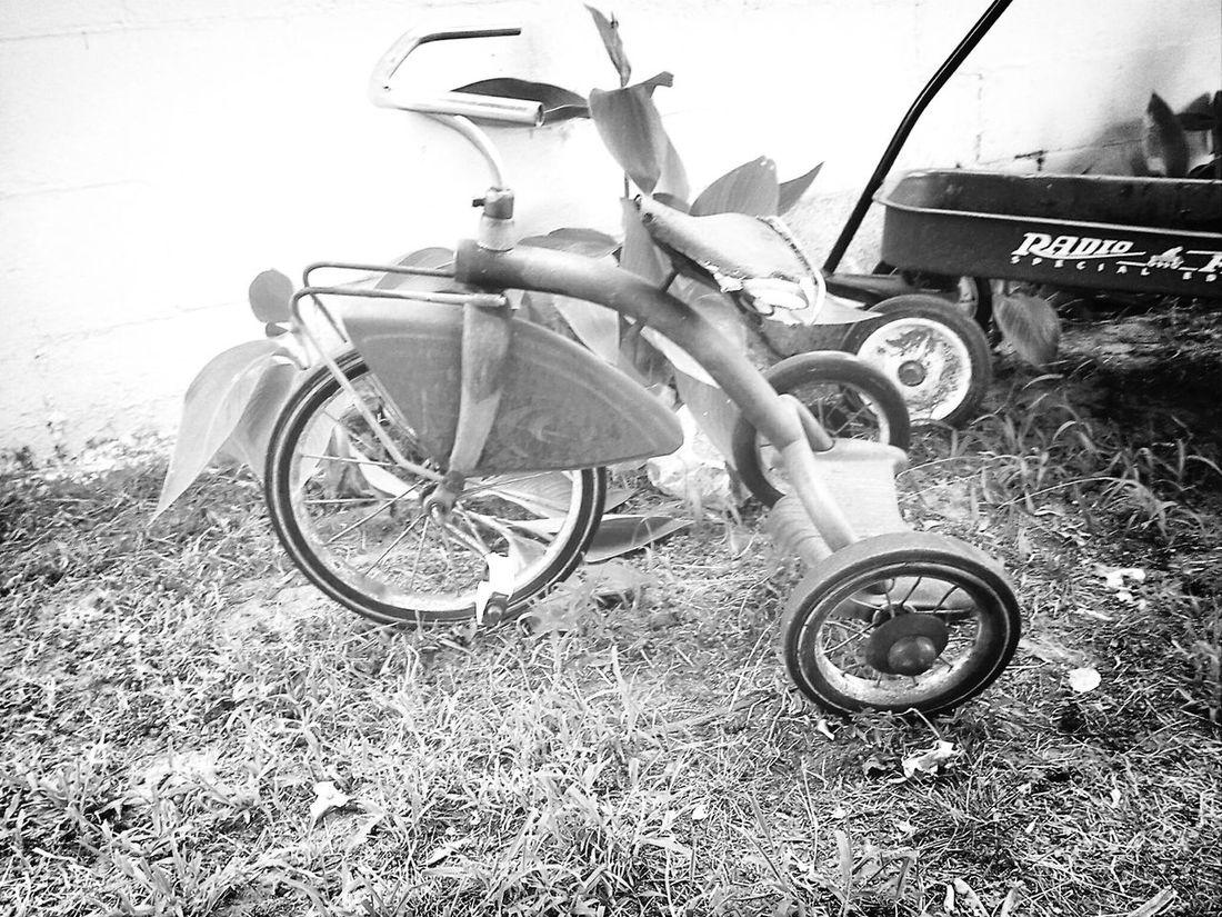 Blackandwhite Tricycle Vintage Bicycles Old School!