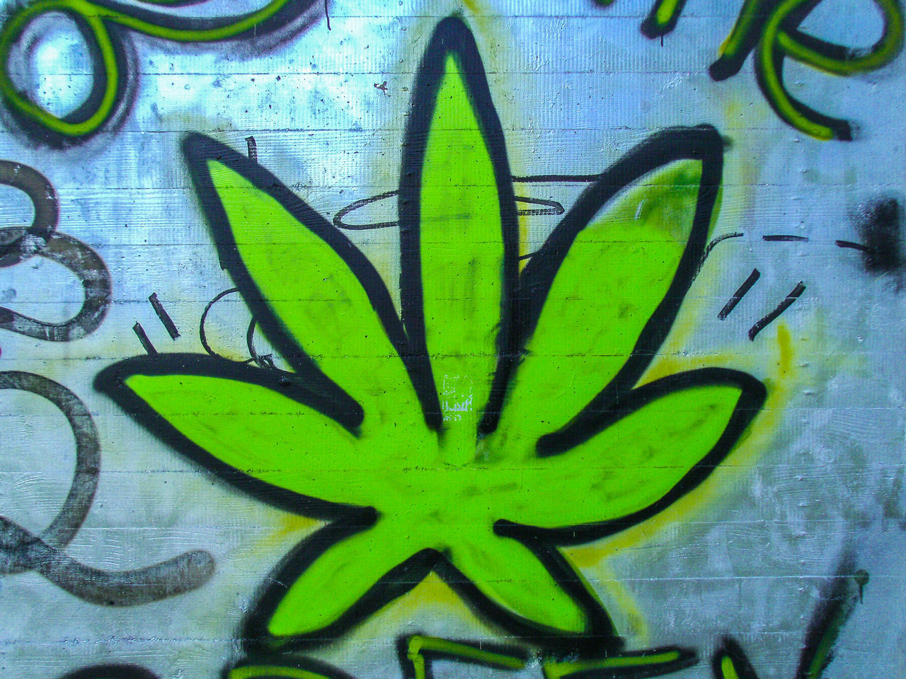 Canabis Communication Creativity Day Graffiti Green Color Leaf No People Outdoors Spray Paint