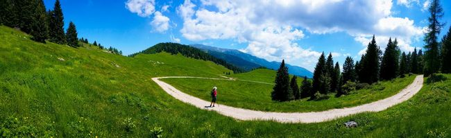 Asiago Highland Sentiero Della Pace Peace Trail Asiago Vicenza Veneto Italy Travel Photography Travel Voyage Traveling Mobile Photography Fine Art Photography Panoramic Views Scenic Landscapes Nature Mountains Hiking Walking In The Woods