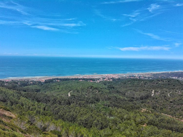 Sea Beach Horizon Over Water Water Nature Outdoors No People Day Scenics Beauty In Nature Tranquility Sky Green Color Grass Blue Vacations Wave Portugal Portuguese Figueira Da Foz, Portugal Forest Trees And Sky Cliff Landscape Beauty In Nature