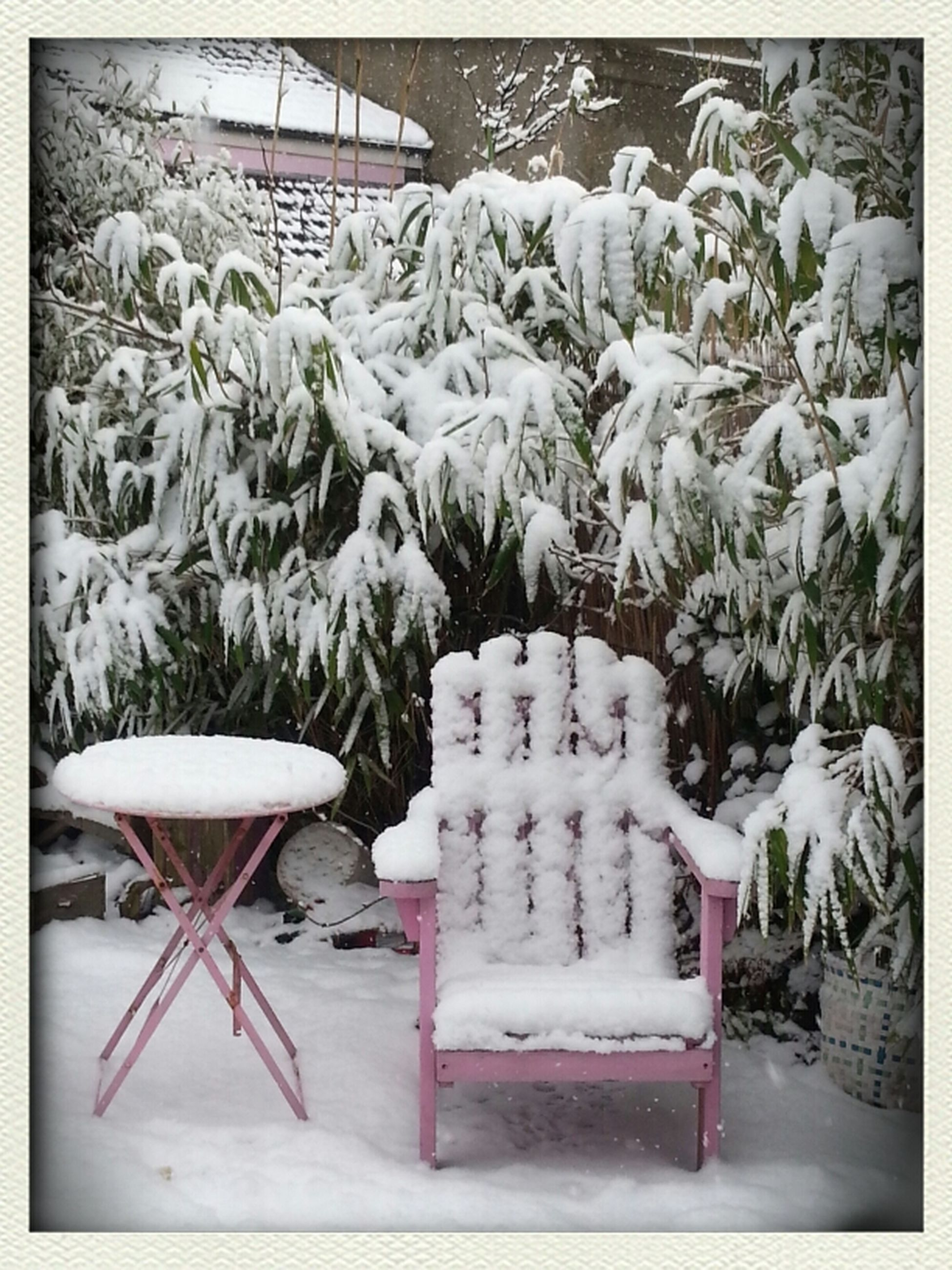 transfer print, auto post production filter, large group of objects, arrangement, snow, abundance, in a row, cold temperature, nature, day, winter, no people, plant, chair, white color, outdoors, wood - material, stack, absence, sunlight