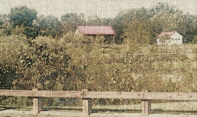 Pencil Drawing Effect Special Effect Plants EyeEm Gallery Shrubs Country Life Nature Photography Grass Building Special Effects Trees Field