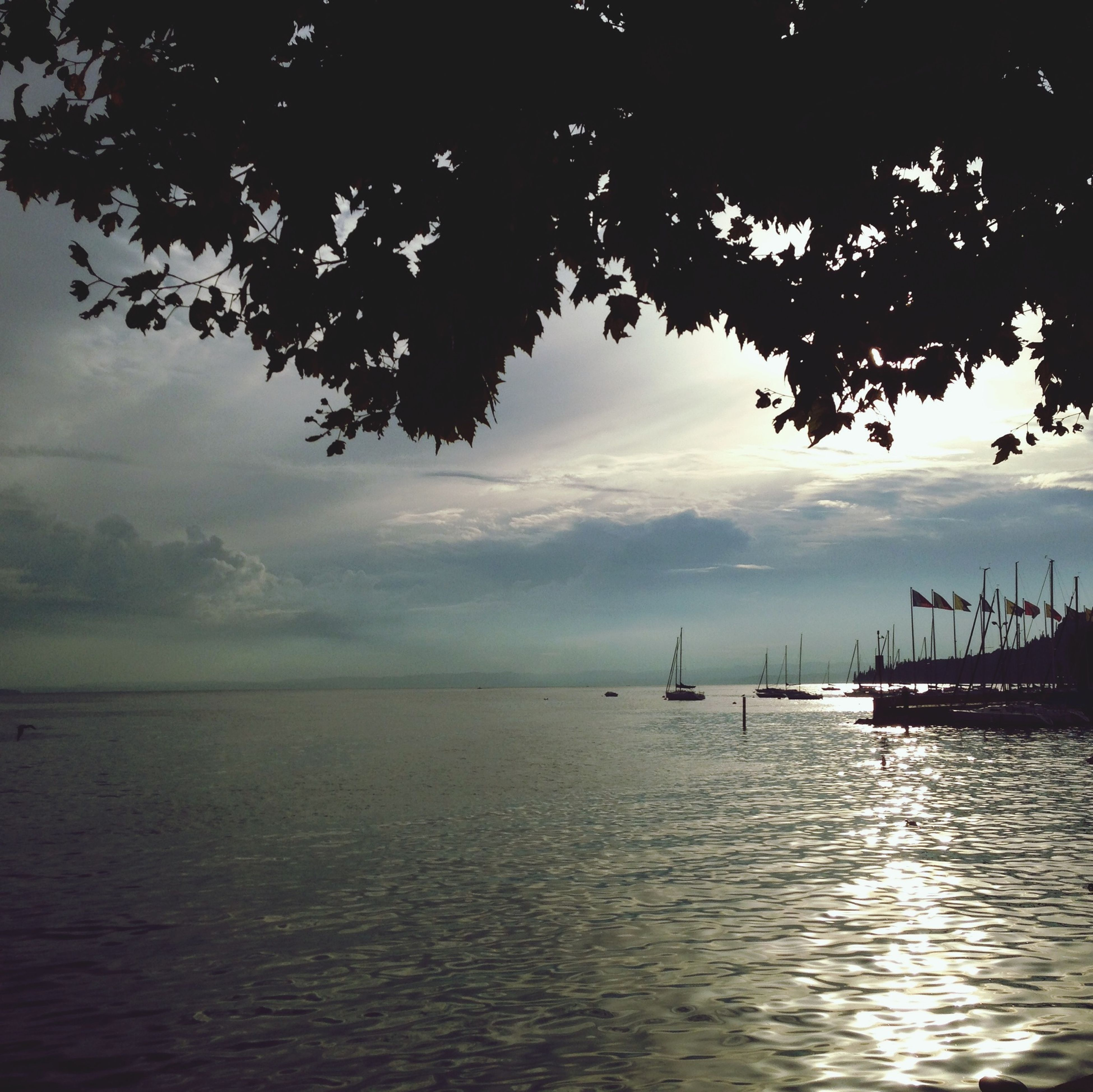 water, sky, sea, tranquility, tranquil scene, silhouette, scenics, waterfront, nautical vessel, beauty in nature, sunset, nature, transportation, boat, cloud - sky, mode of transport, tree, dusk, horizon over water, idyllic