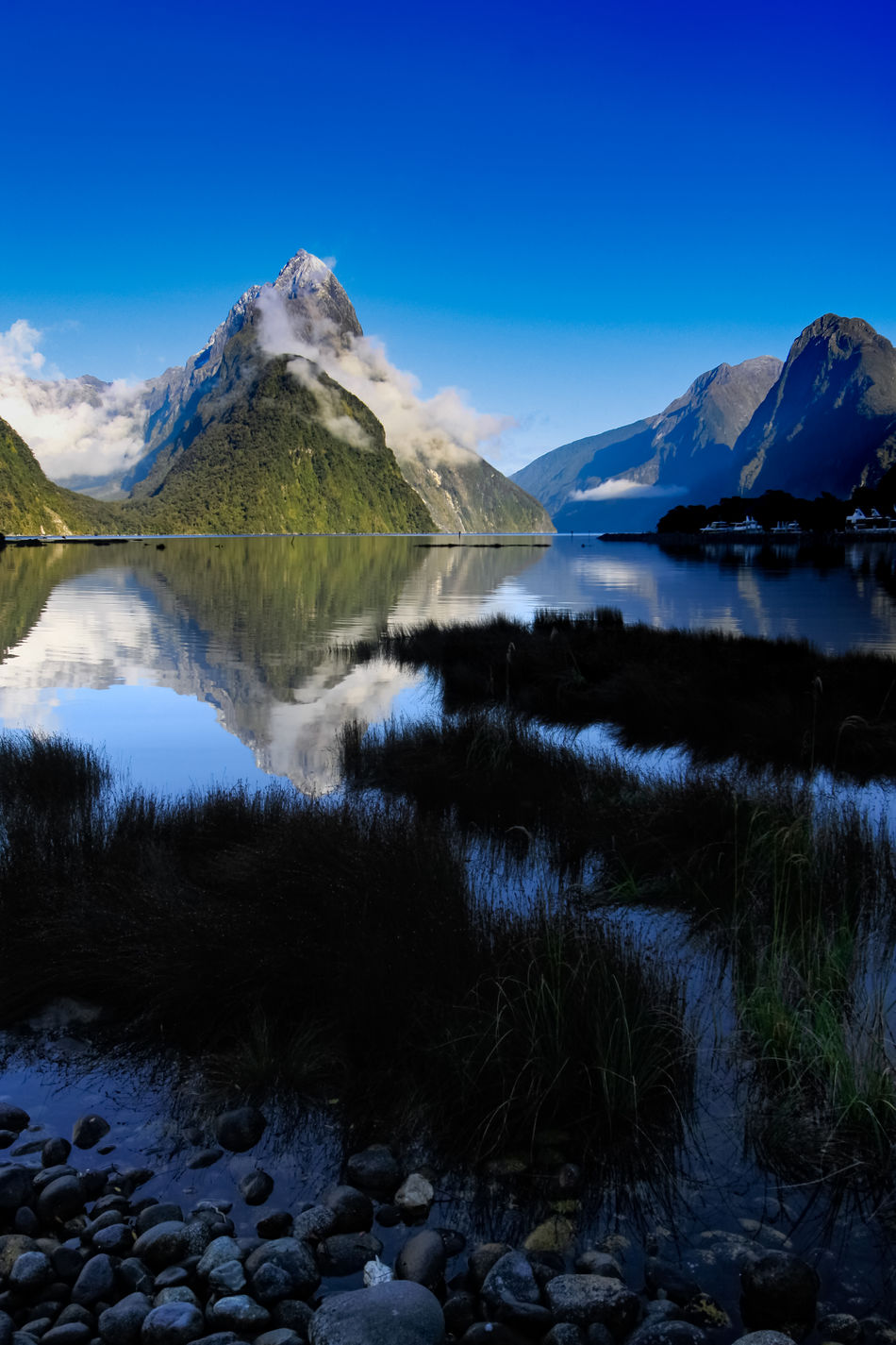 After several days of rain and snow, the clouds parted to a still glassy morning. Located in the south west of New Zealand's South Island, within Fiordland National Park Milford Sound has one of the worlds highest mean annual rainfalls of 6,412 mm (252 in). Te Wahipounamu World Heritage Site, New Zealand Love Life, Love Photography Blue Cold Temperature Day Grass Lake Mountain Mountain Range Nature Outdoors Scenics Sky Snow Tranquil Scene Tranquility Travel Destinations Water Winter Fiordland Milford Sound New Zealand Landscape Mitre Peak Reflection Dawn Snowcapped Mountain Peak