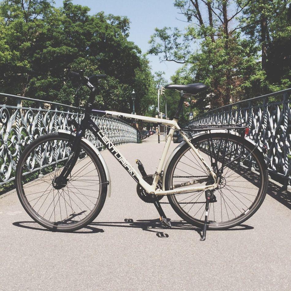 Fahrrad. Relaxing Bycicle Fahrrad Freiburg