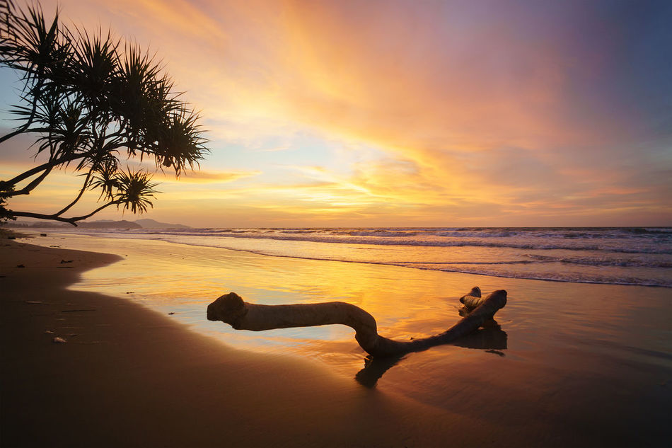 Beutiful landscape during sunset at the beach in Sabah, Borneo, Malaysia Adult Amazing View Beach Beauty In Nature Borneo Child Drift Wood On Beach Horizon Over Water Human Body Part Malaysia Truly Asia Nature No People Outdoors People Sabah Borneo Sea Sky Sunset Tranquil Scene Two People Vacations