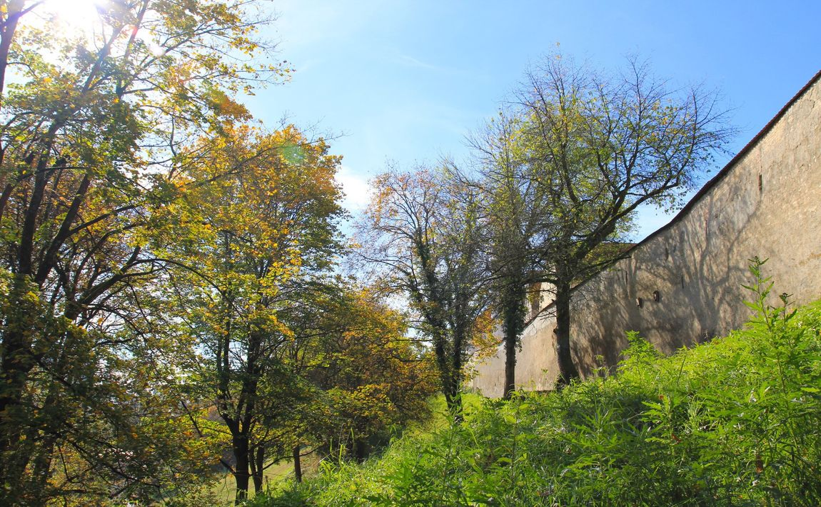 Stadtmauer Autumncolors Draußen