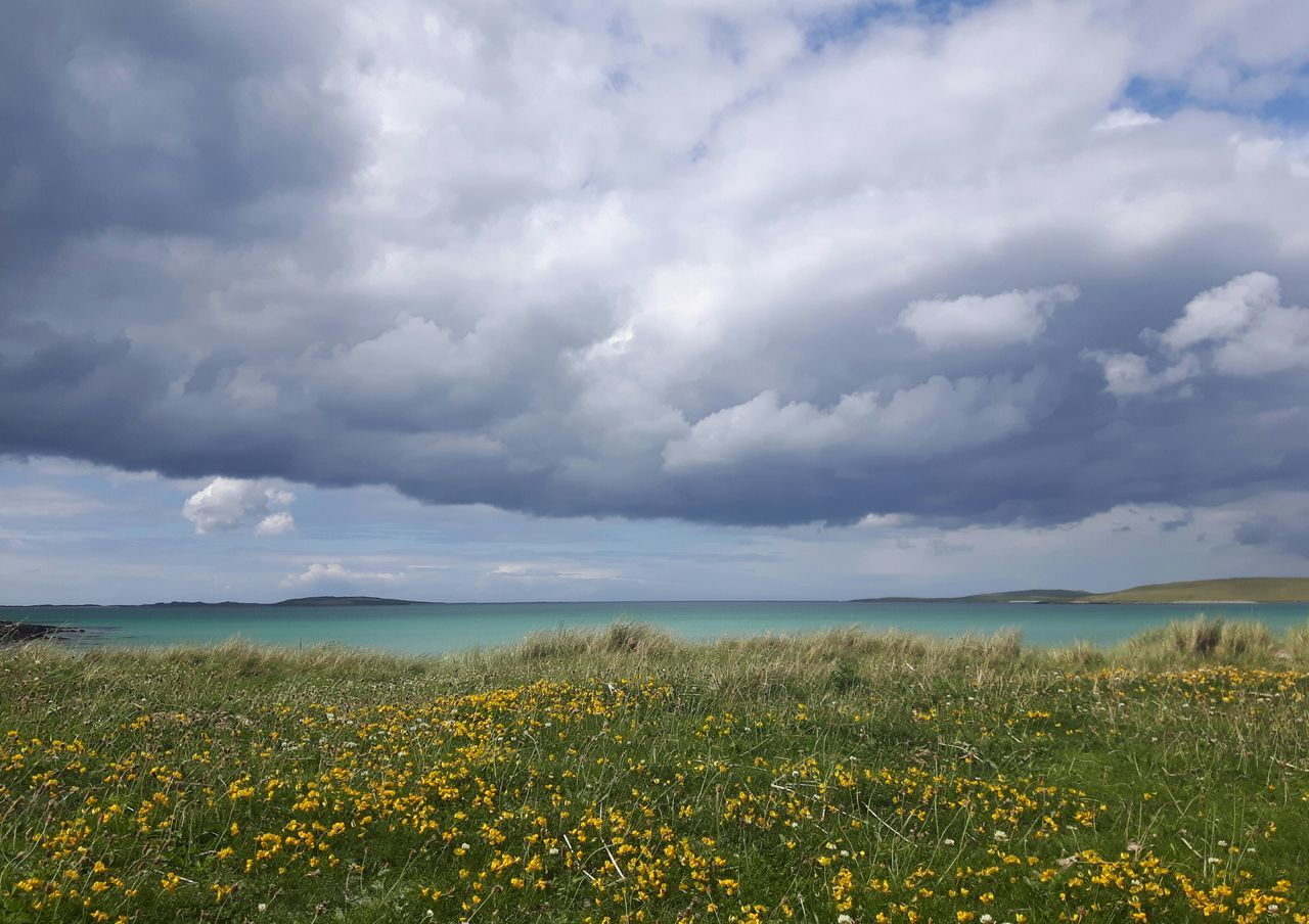 Cloud - Sky Flower Sea Beauty In Nature Nature Water Landscape Tranquility Outdoors Growth Sky Day Red Beach Horizon Over Water Scenics No People Panoramic Storm Cloud Summer Uist Hebridies Outerhebrides Clachan Westernisles Live For The Story Out Of The Box The Great Outdoors - 2017 EyeEm Awards