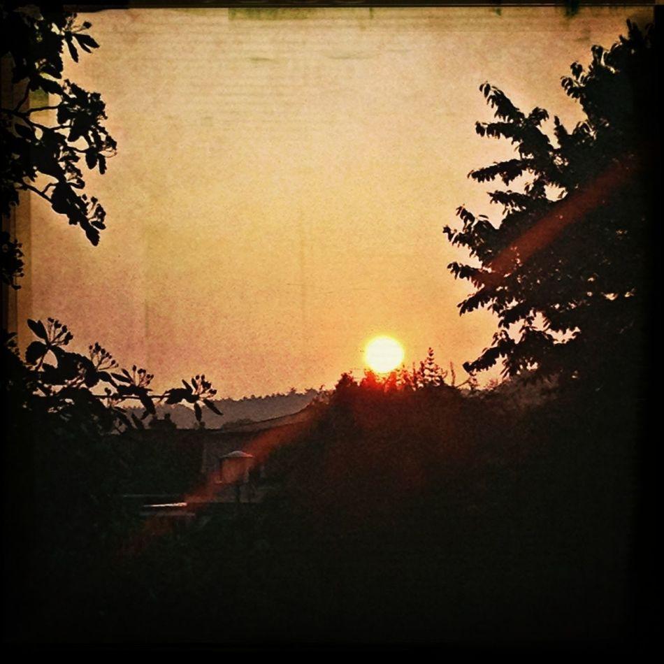 Guten Morgen! Deutschland Good Morning! Sunrise