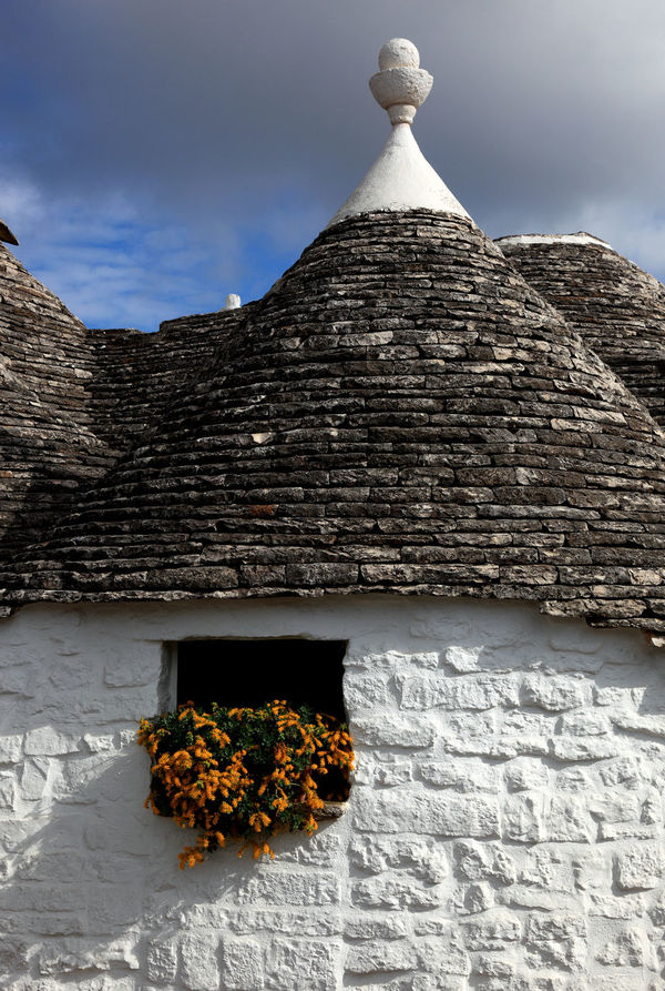 Alberobello, Trulli, Apulia, Italy Alberobello Famous Place Flower History House Italy No People Outdoors Puglia Tourism Travel Destinations Traveling Travelphotography Trulli Houses Trullo Trullo Di Albero Bello