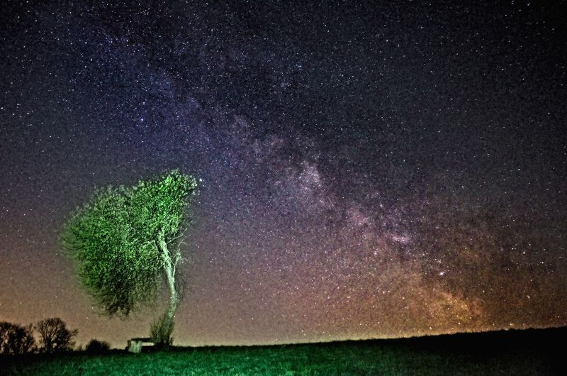 Here is a somewhat more natural edit...! I used the flashlight of my camera from around 5-10 meters away for half the exposure time, and the tree still is almost to bright! Astrophotography Milkyway Milkyway Lovers Under The Milky Way EyeEm Best Shots EyeEm Best Edits EyeEm Best Shots - Long Exposure Check This Out Skyporn Edge Of The World taken in Prittriching, Bavaria My Best Photo 2015