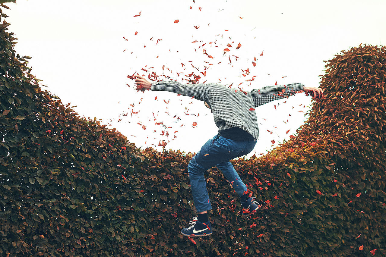 Beautiful stock photos of rosen, Arms Outstretched, Autumn, Casual Clothing, Change
