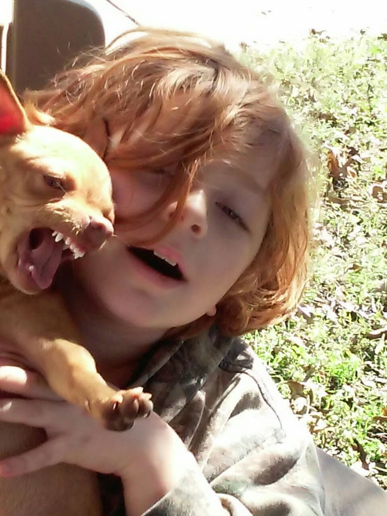 Uniqueness Pets Happiness A Boy And His Dog Redhead Boy And Dog Chihuahua Funny Faces Pflugerville,tx