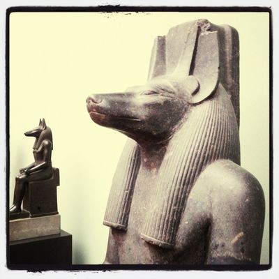 Dogs at Glyptoteket by magnax23