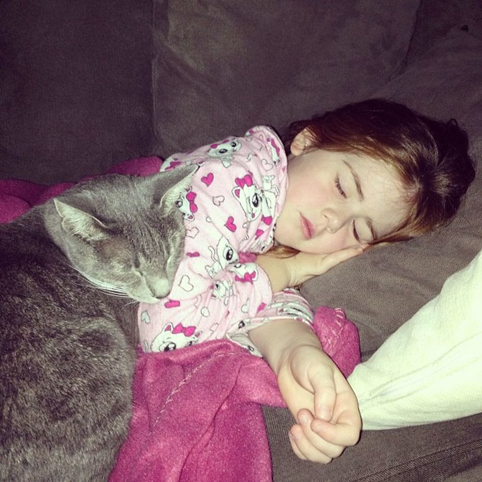 Too cute! ☺ Sleepy Cuddles Cat Hadabigday photooftheday