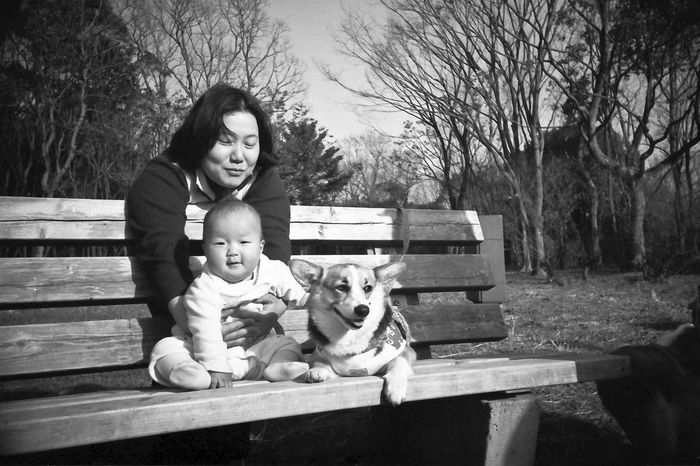 Baby Mother Mother And Child Dog Corgi Welsh Corgi 11yearsago Mementos Group Photo Bench Park March Spring OSAKA Japan Family Lomo Lomography B&w B&w Photography