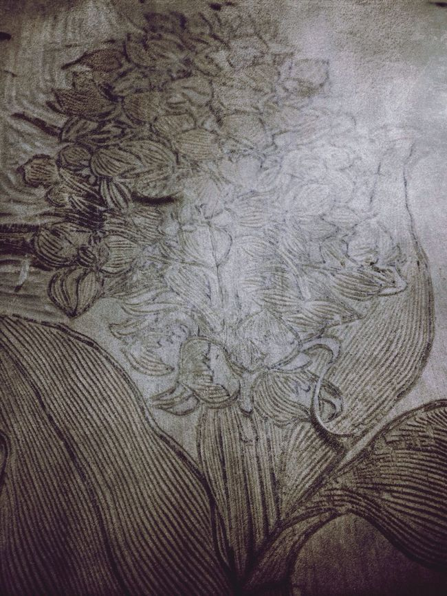 The Tale Of Plants Jayez's Wood Cut Painting Art keep cutting? Black And White