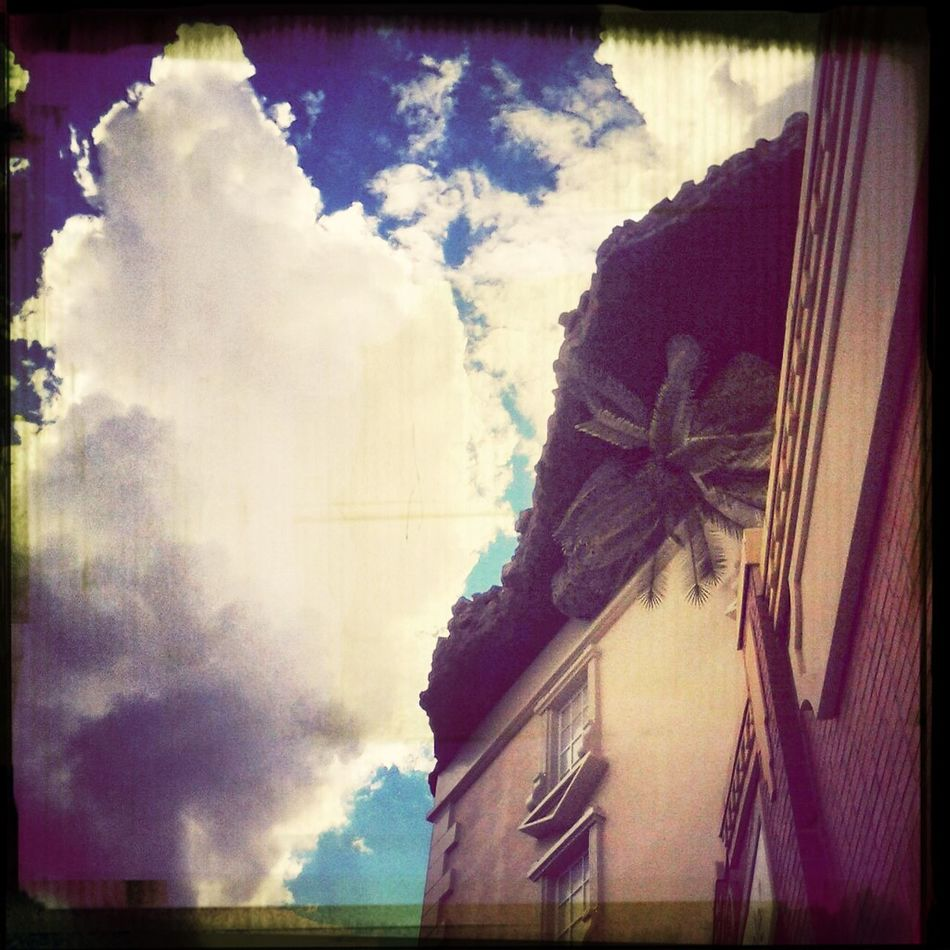 Upside down EyeEm Check This Out Illusion Confusion. WonderWorks