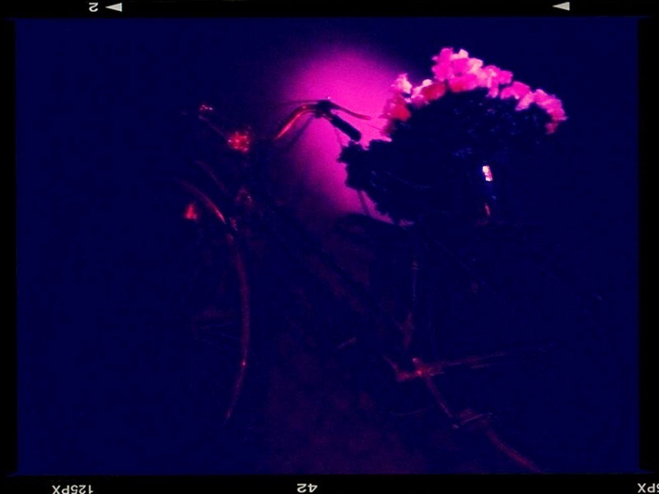 Flower Fiets