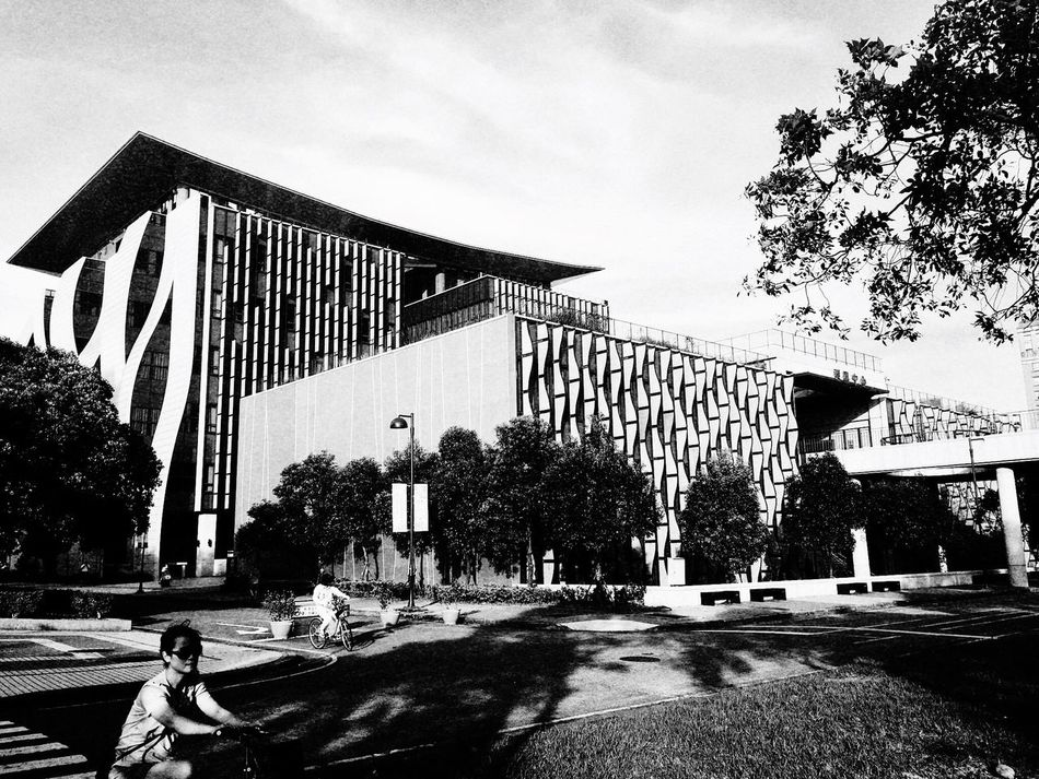 Library。 EyeEm Gallery EyeEm Best Shots - Black + White 2016 EyeEm Awards Everything In Its Place How Do We Build The World? TOWNSCAPE EyeEmBestPics The Tourist Tree Building Path University Sanxia
