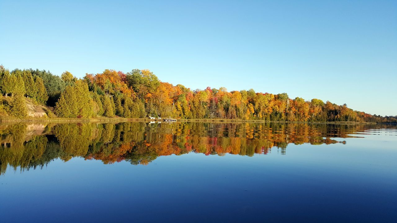 The Fall Beauty on Black River in Cheboygan, Michigan USA. Beauty In Nature Fall Fall Beauty Fall Colors Horizontal Symmetry Outdoors Reflection Tranquil Scene Tranquility Water Reflections Water_collection Waterfront Waterporn