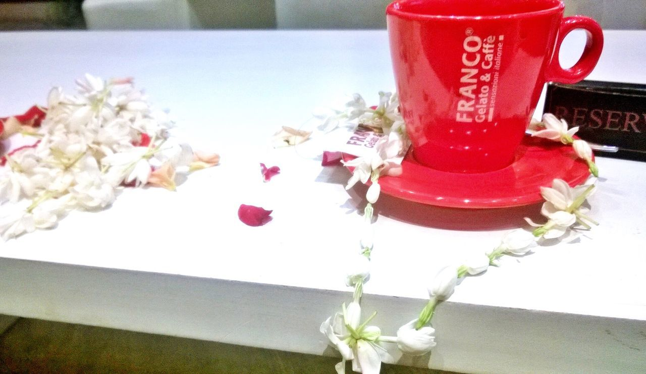 Jasmine coffee reservations. Coffee Jasmine Flower